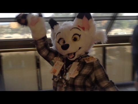 rencontre furry france)