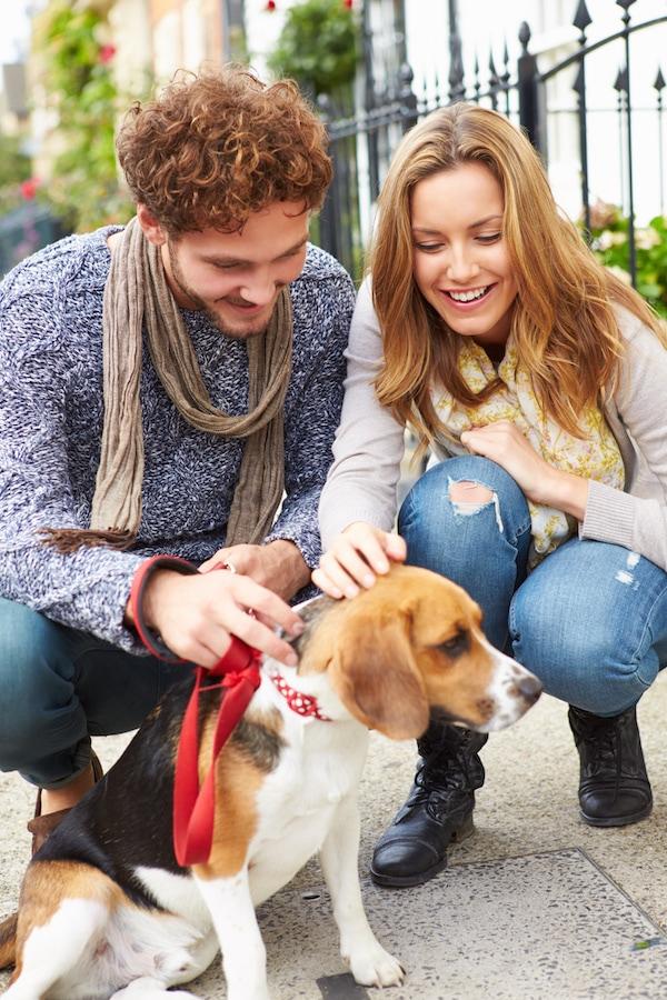 site de rencontre personne aimant les chiens