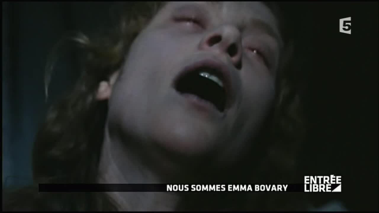 madame bovary première rencontre charles emma)