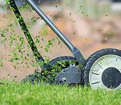 cherche homme pour travaux de jardinage)