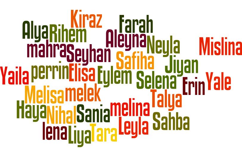recherche prenom fille musulman)