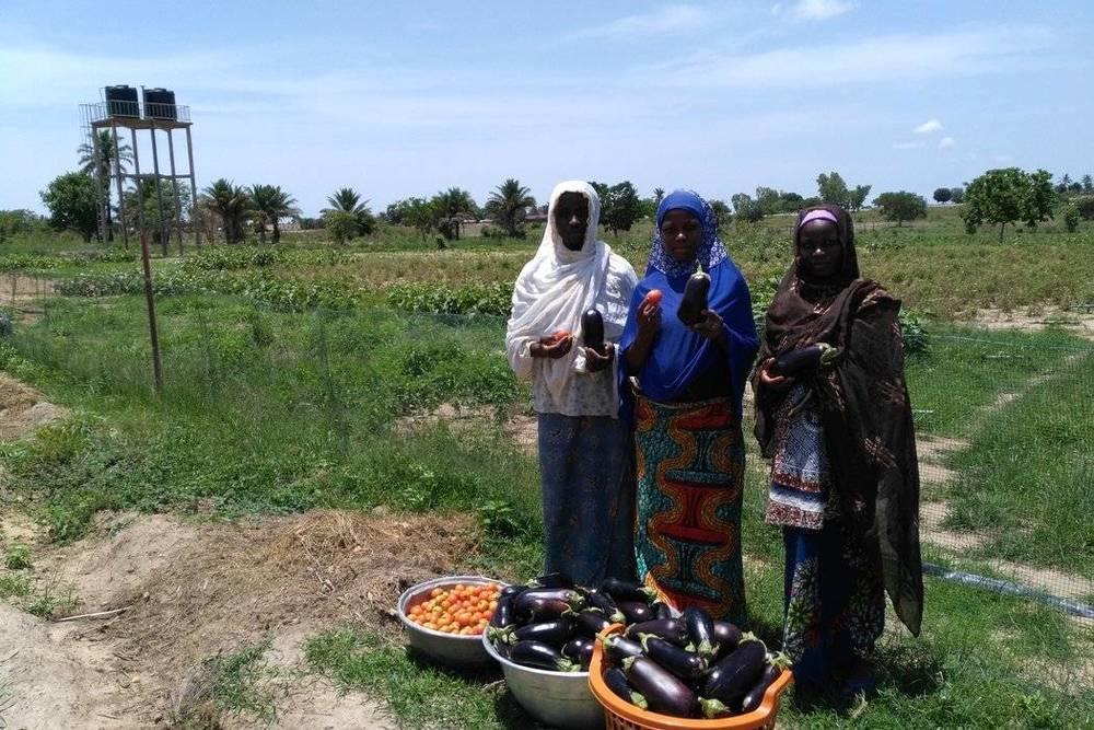 Focus sur le milieu agricole