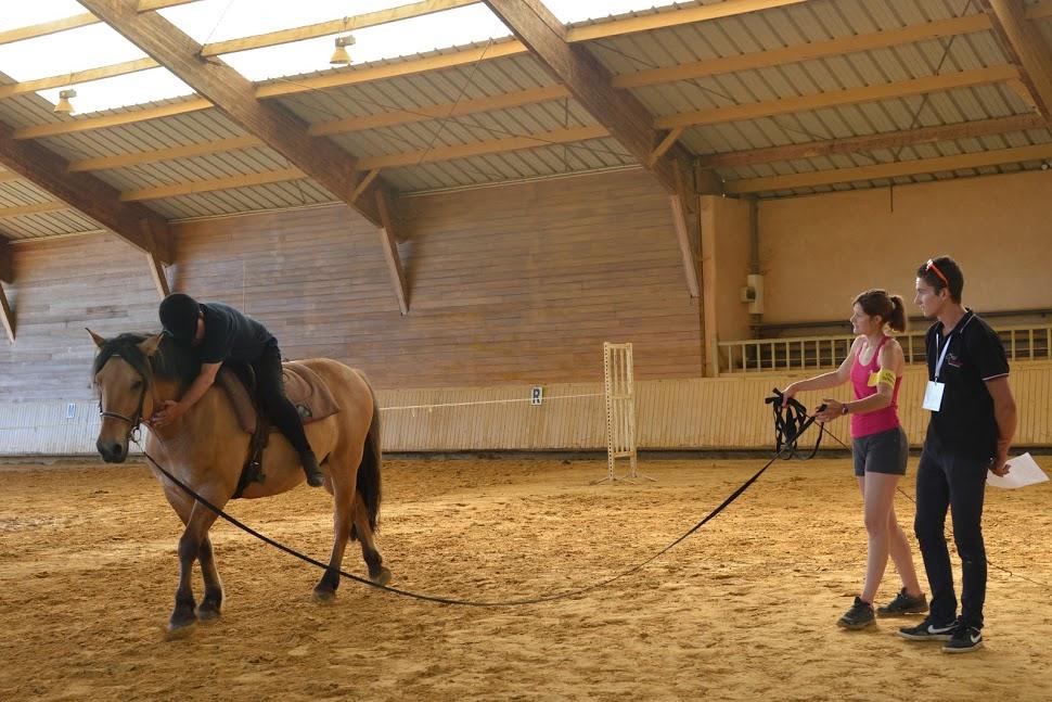 site rencontre equitation)