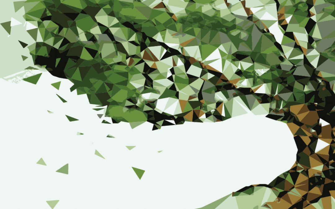 Rencontres régionales d'arboriculture CENTRE OUEST