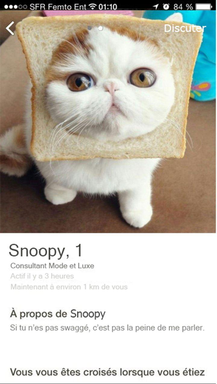 chat rencontre 01)