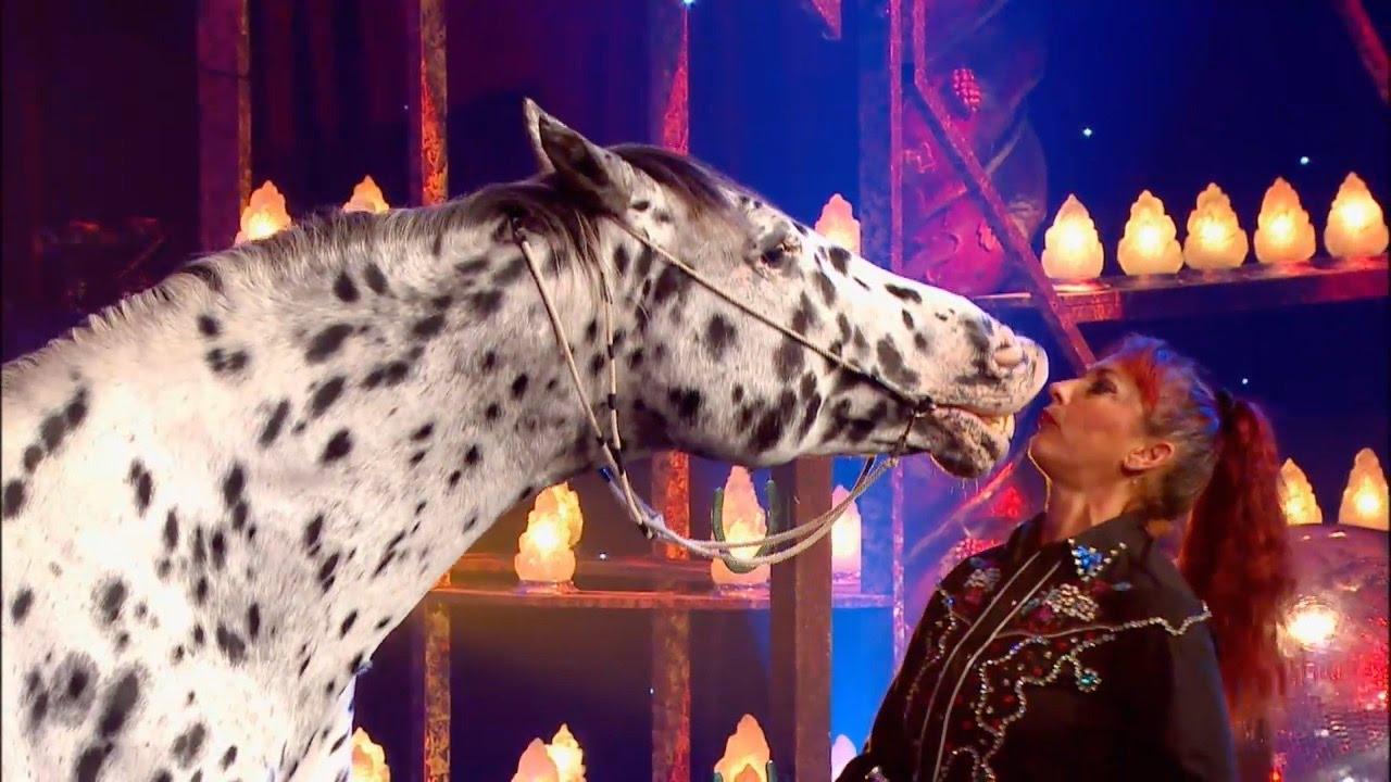 cherche femme qui aime les chevaux
